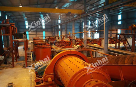 Xinhai gold flotation process