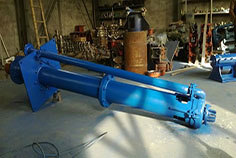 Submerged Slurry Pump-case