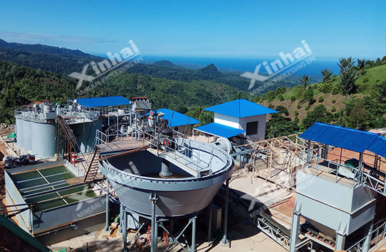 Indonesia-100tpd-gold-mineral-processing-project